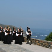 Ortiguera pipers