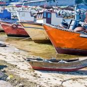 Rias Bajas boats