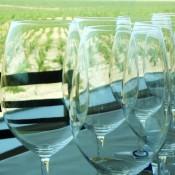 Habla winery - near Trujillo, Extremadura