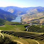 douro-stage