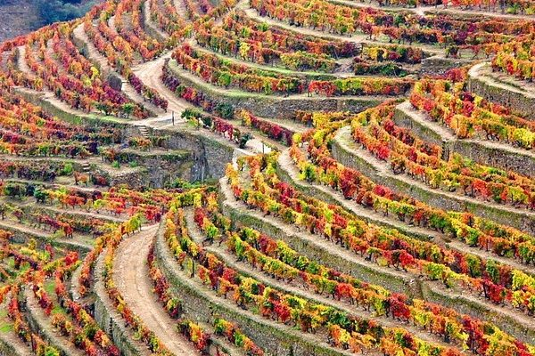 douro-valley-stage