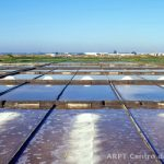 Photo of salt pans in the Aveiro estuary
