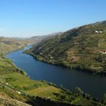 Photo of vineyards in the Douro Valley