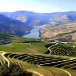 Photo of the Douro Valley